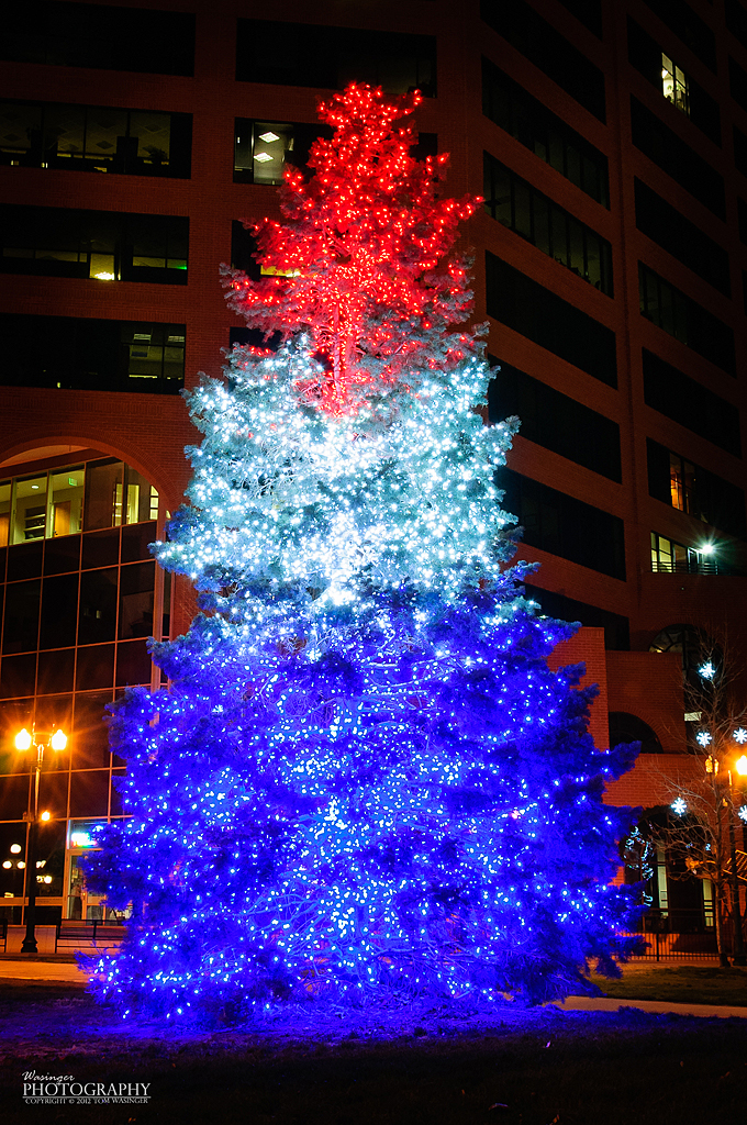 1000+ images about Red & Blue Christmas Tree's on ...