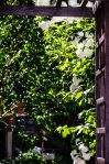 6775--Backyard-entrance