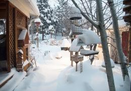 2016 Snow StormTime-Lapse